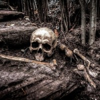 skull-2525192_640