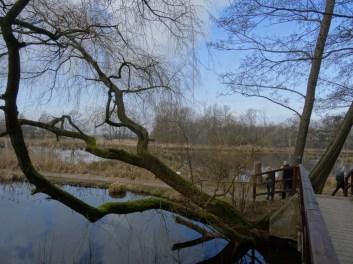 Foto von den Nette Seen