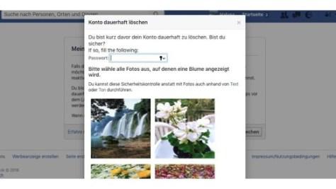 """Die Seite mit der Option zum dauerhaften Löschen des Facebook-Kontos findet man über die Hilfe, wenn man dort nach """"Konto löschen"""" sucht und auf """"Wie kann ich mein Konto dauerhaft löschen?"""" klickt."""