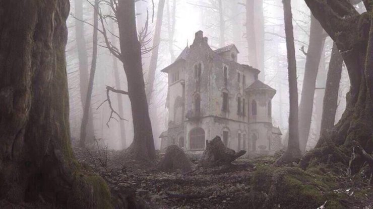 The Big Scary House In Woods