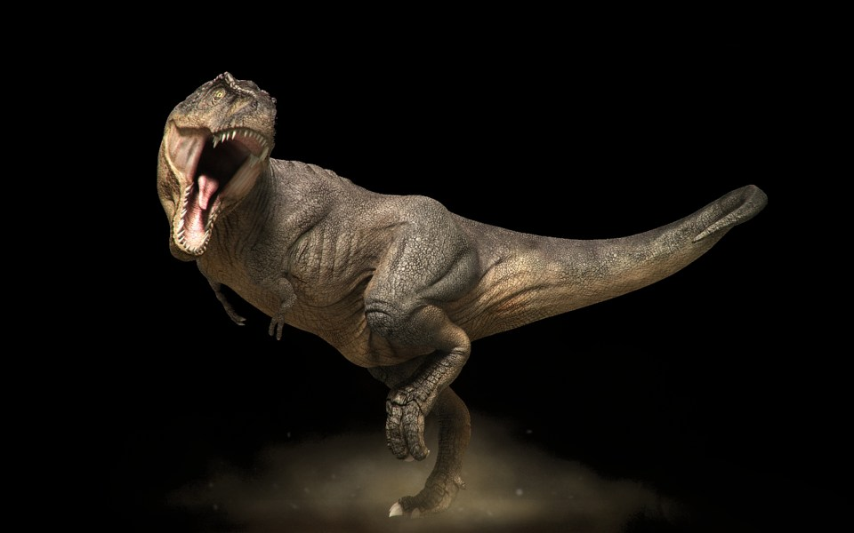 Accidental Discovery of Blood, Collagen in Dinosaur Bones Could Change Everything