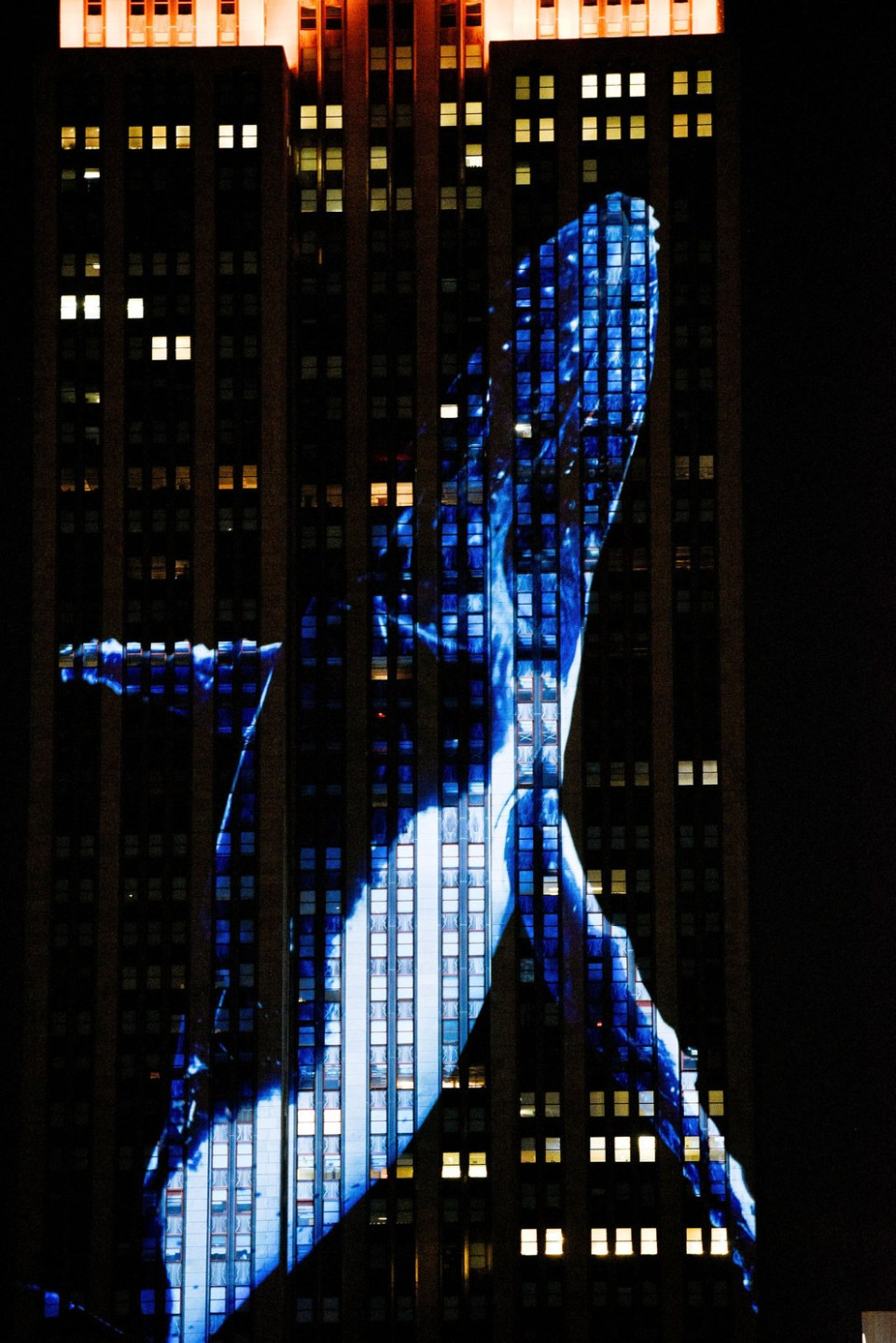 endangered animals on empire state (13)