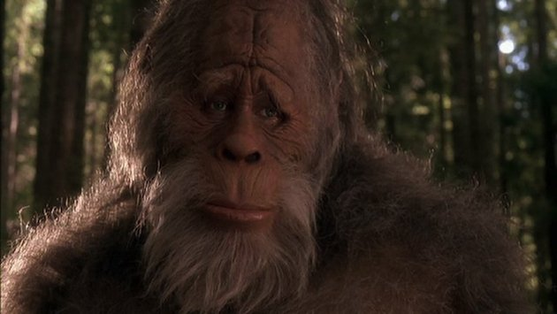 Drones Are Now Searching For Bigfoots