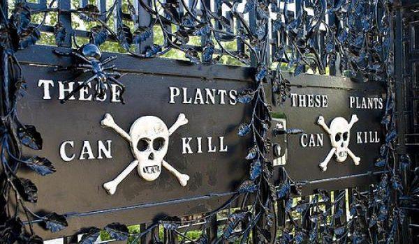 Unfriendly Places For Tourists