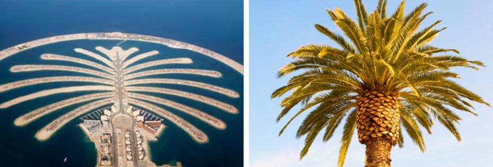 Palm Islands in Dubai