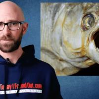 The Truth About How Dangerous Piranhas Are