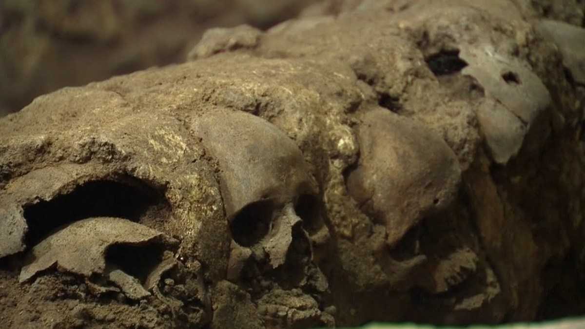 Archaeologists Found Tower Of Skulls Under Mexico City - Video