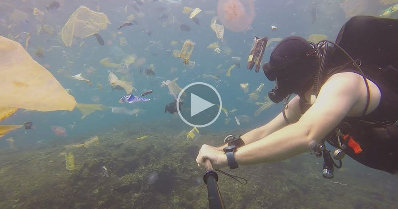 Scuba Diving in Bali Gets Trash Instead Of Tropical Fish