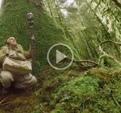 finding-silence-in-a-noise-world-360-nyt-doc
