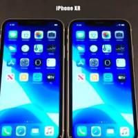 iOS 13.3 Beta 2 Vs iOS 13.2.2 Speed Test
