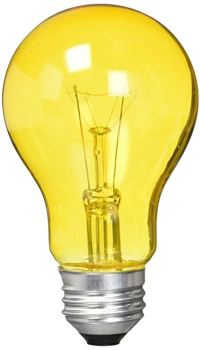 light bulb and oil experiment