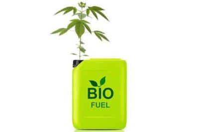 Hemp as a biofuel