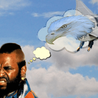 Why doesn't Mr T like getting on planes, fool?