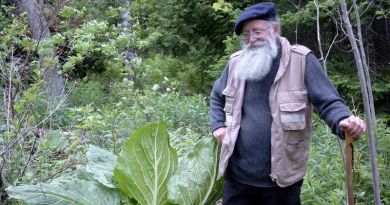 Dad & the Skunk Cabbage