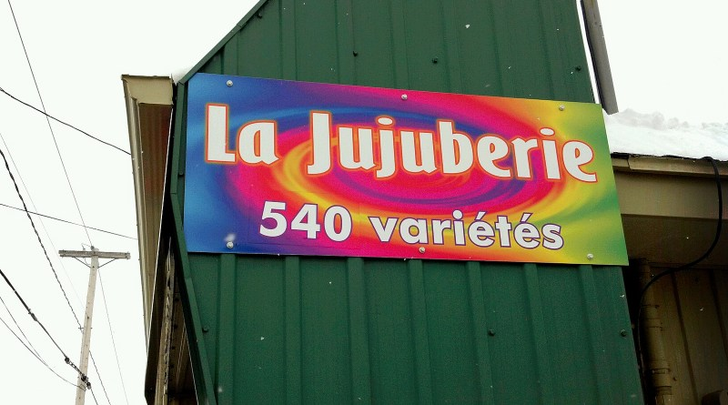 La Jujuberie