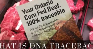 What is DNA Traceback - ONCornFedBeef