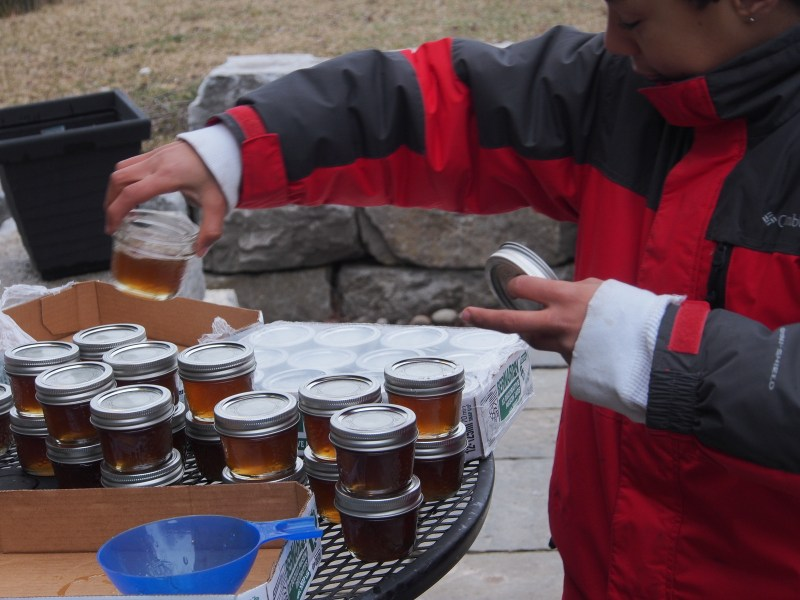 Noah helping to bottle the maple syrup
