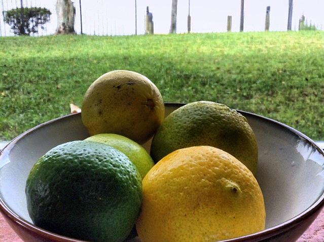Windfalls - lemons and limes
