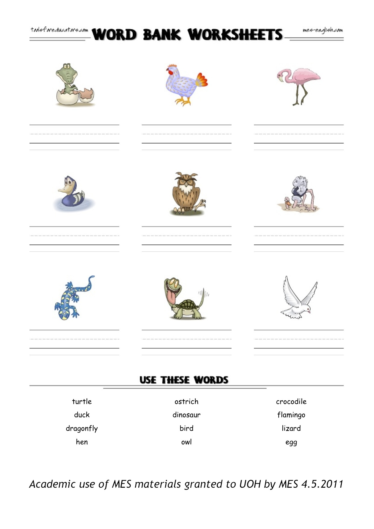 3rd Grade Animal Adaptation Worksheets