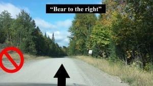 beartotheright