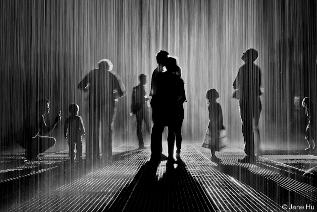 the rain room at moma photos untapped cities