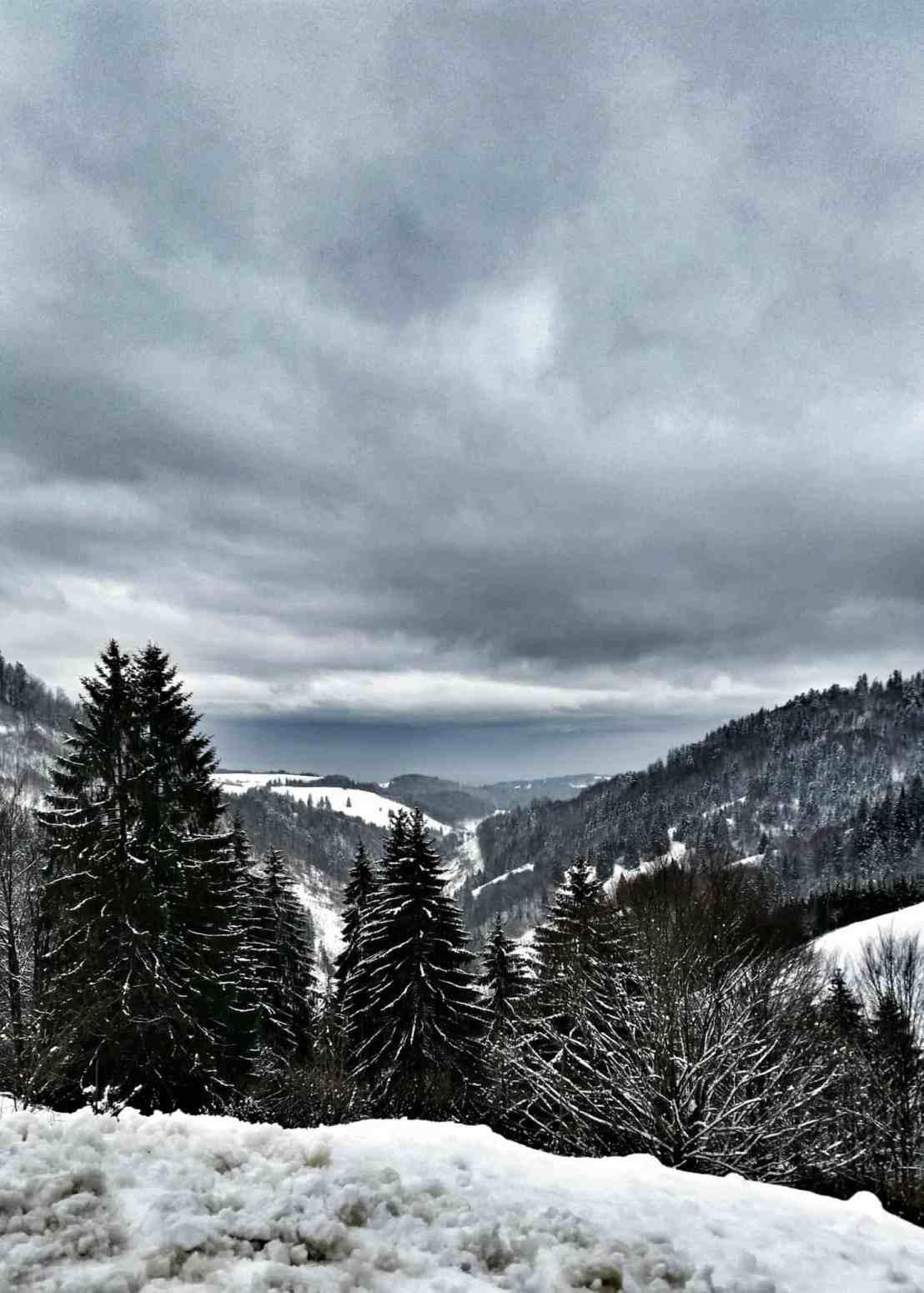 Schlechtwetterfotografie Schwarzwald