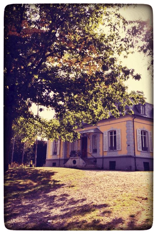 Villa Aichele im Aichelepark in Lörrach
