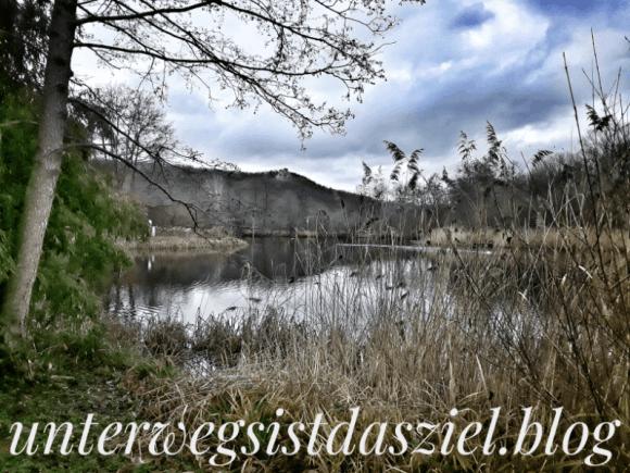Landschaftspark Grütt Lörrach im Winter. Im Hintergrund Burg Röteln
