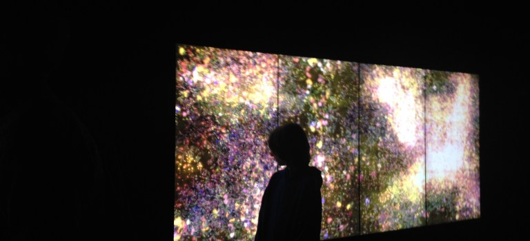 interactive art from teamLab