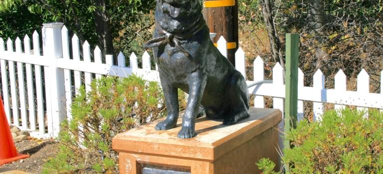 Statue of Bosco