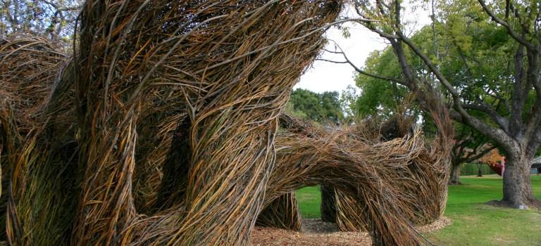 Patrick Dougherty's Whiplash at the Palo Alto Art Center