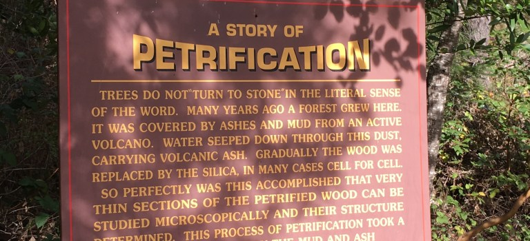 A Story of Petrification. Sign at the entrance of the Petrified Forest in Calistoga.