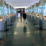 Stepping Out: Shoes in World Cultures, at SFO International Terminal