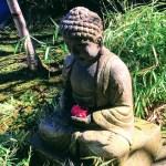 Buddha in the Japanese Garden, San Mateo