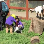 Kids petting baby goats, Deer Hollow Farm, Cupertino