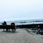 Bench overlooking the cove at Fitzgerald Marine Reserve in Moss Beach