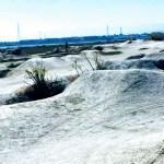 Dirt jumps at Shorebird Park in Foster City
