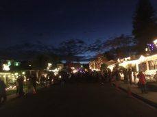 Eucalyptus Street, San Carlos