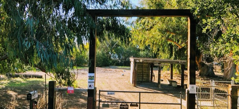 Gate to the donkey pasture in Bol Park, Palo Alto.