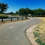 Trail at Martial Cottle Park in San Jose.
