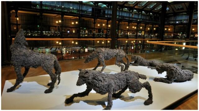 La Meute_Lionel Sabatte_2006-2011_moutons de poussiere agglomeres sur structure metallique et vernis_┬® F-G Grandin MNHN_1