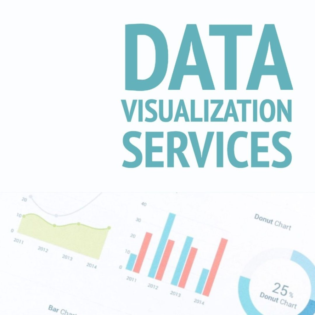 data visualization services