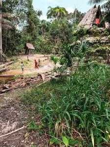 Dorf im Amazonas
