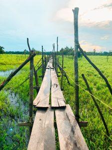 Steg am Amazonas