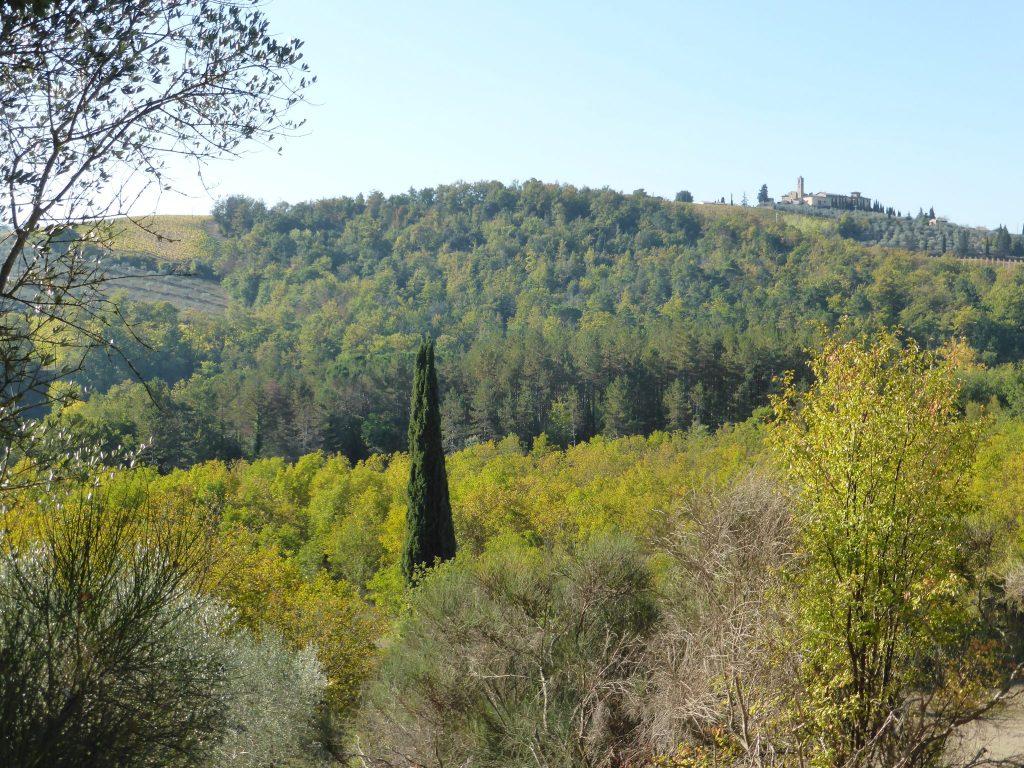 via-francigena-panorama