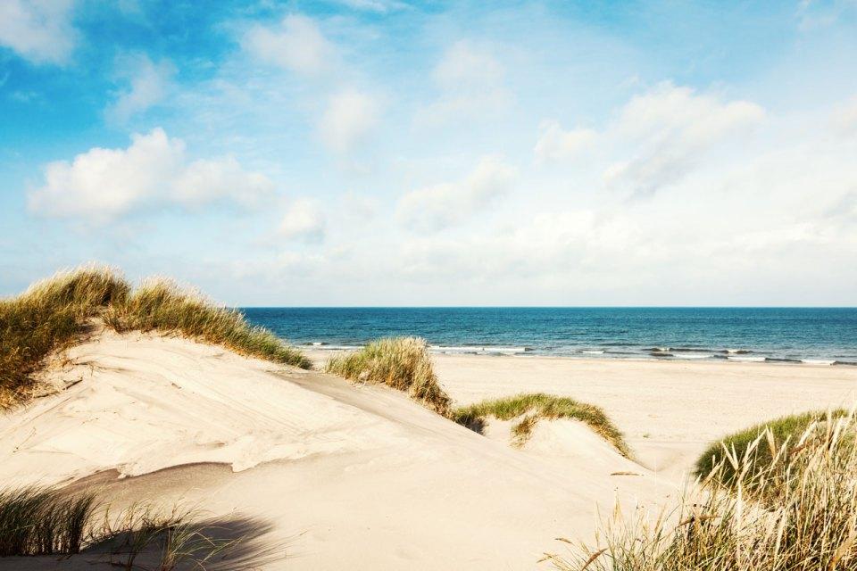 spiagge Piombino