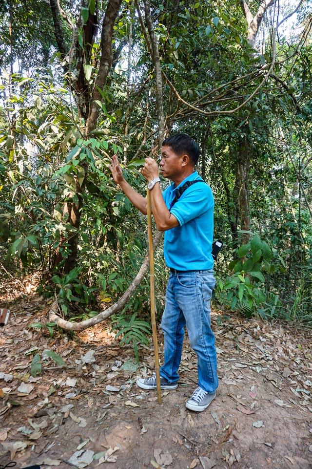 escursione doi inthanon thailandia