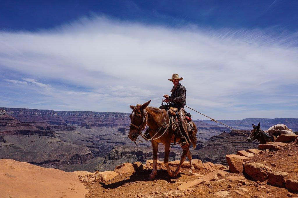 escursioni a cavallo grand canyon