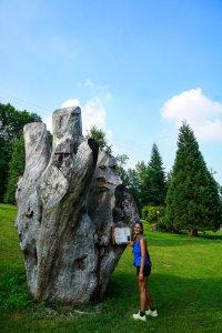 parco della sequoia fellicarolo
