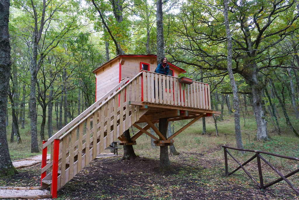 case sull'albero daunia avventura